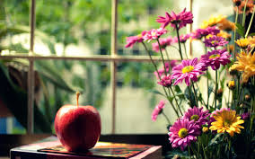 apple and flowers 2